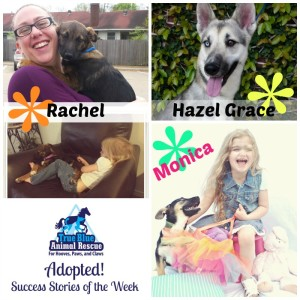 True-Blue-Animal-Rescue-Success-Story-Hazel-Grace-Rachel-Monica-Adopted